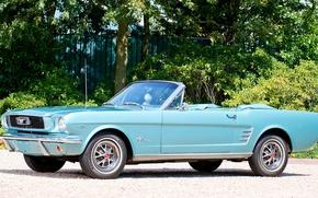 Картинка Mustang, Ford, Машина, Форд, Desktop, Мустанг, Car, Автомобиль, Blue, Wallpapers, Musclecar, 1966, Красивая, Convertible, Обоя, …