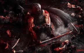 Картинка Ryu Hayabusa, Sword, Video Game, Tecmo Koei, Team Ninja, Blood, Modern Day Ninja, Ultimate Ninja, …