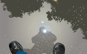 Обои лужа, вектор, отражение, осень