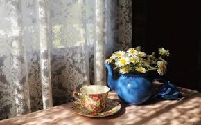 Обои ромашки, дом, окно, чашка