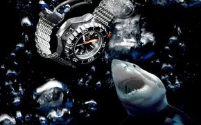 Картинка вода, акула, Часы, Omega, Seamaster, 1200M, Ploprof