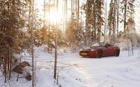 Картинка зима, лес, солнце, снег, красный, Jaguar, ягуар, кабриолет, Convertible, XKR-S