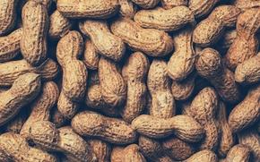 Обои орех, nuts, арахис, peanuts