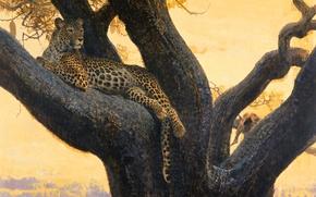 Картинка кошка, дикая, ветка, хищник, отдых, картина, арт, леопард, дерево, Bob Kuhn, пятна