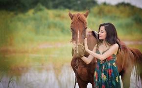 Картинка лето, лицо, конь, лошадь, азиатка