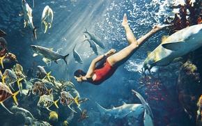 Обои плавает, фотосессия, лучи света, Рианна, кораллы, купальник, рыбы, Harpers Bazaar, Rihanna, певица, акулы, актриса, красный, ...