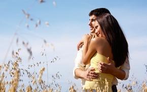 Картинка небо, девушка, любовь, природа, улыбка, фон, настроения, женщина, растение, брюнетка, объятия, пара, мужчина, love, парень, …