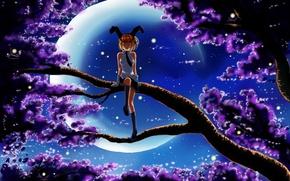 Картинка цветы, ночь, ветки, светлячки, эмоции, дерево, луна, смех, арт, девочка, форма, уши, неко, сидя