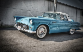 Картинка Ford, Форд, передок, 1956, Thunderbird, Тандебёд