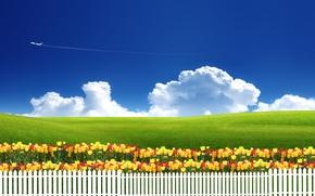 Картинка небо, трава, облака, цветы, природа, самолет, забор, луг, тюльпаны