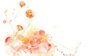 Картинка Белый, фон, рисунок, цветы