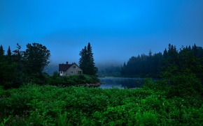 Картинка лес, небо, дом