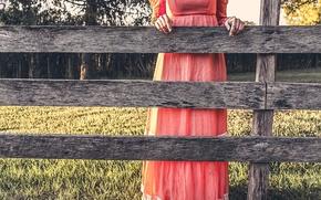 Картинка природа, забор, платье
