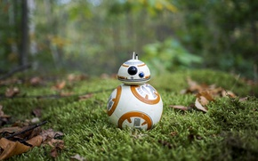 Обои Star Wars, grass, BB-8