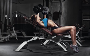 Обои female, bodybuilder, fitness, gym, workout, dumbbells