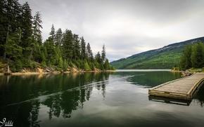Обои река канада, лес, мостик, причал, пирс