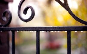 Обои капли, макро, капельки, дождь, забор, ограда, размытость