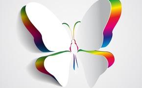 Картинка бабочка, цвета, крылья, фон