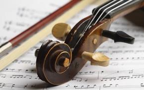 Картинка wood, score, violin