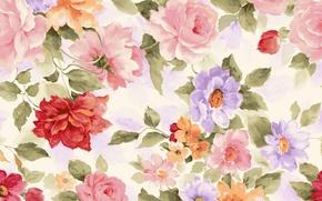 Картинка цветы, краски, картина, текстура, лепестки, акварель