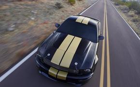 Обои дорога, полосы, ford, shelby gt-500