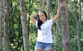 Картинка девушка, улыбка, шорты, брюнетка, футболка, girl, sexy, shorts, smile, brunette, деревья., t shirt, ira l, …