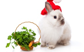 Картинка кролик, морковь, корзина, Новый год