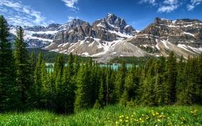 Картинка Банф, парк, пейзаж, горы, природа, деревья, HDR, трава, Канада, лес