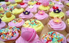 Обои пирожное, обои, вкусняшка, тортинки