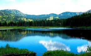 Обои Лес, Озеро, Горы