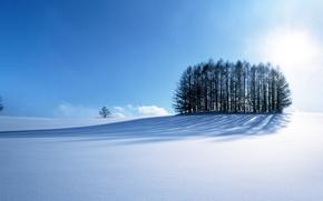 Картинка road, sky, trees, blue, winter, mountain, snow, sun