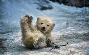 Картинка зима, фон, мордочка, медвежонок