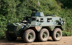 Картинка британский, бронетранспортёр, Saracen, колёсный, FV603