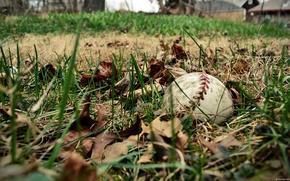 Картинка field, sports, baseball
