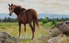 Картинка пейзаж, природа, конь, лошадь, графика, картина, живопись, обои от lolita777