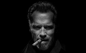 Картинка look, cigar, Arnold Schwarzenegger