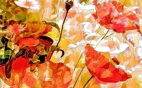 Картинка поле, цветы, природа, лепестки, луг