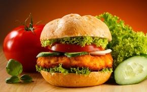 Обои еда, огурец, бутерброд, помидор, гамбургер, котлета, салат
