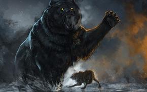 Картинка Бой, Медведь, Волк