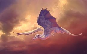 Картинка полет, крылья, существо, арт, в небе, novawuff