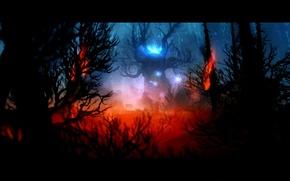 Картинка Fire, Forest, Ori, Ори