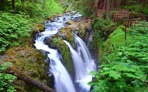 Картинка лес, деревья, река, водопад, поток, США, Washington, Olympic National Park, Sol Duc Falls