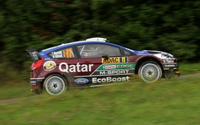 Картинка Ford, Трава, Лес, Focus, WRC, Rally, Neuville