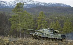 Обои leopard1, танк, лес
