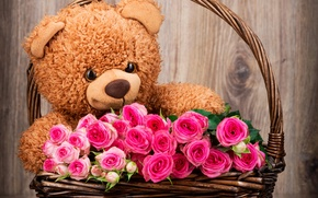 Обои pink, roses, basket, flowers, teddy, bear, with love, romantic
