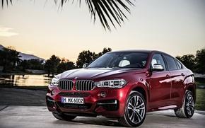 Картинка BMW, вишневый, автомобиль, F16, 2014