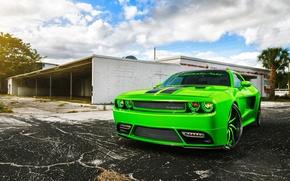 Обои Rider, Green, SRT8, Challenger, Dodge, Front, Tuning, Chall