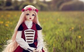 Картинка поле, природа, игрушка, кукла, блондинка, венок, длинные волосы