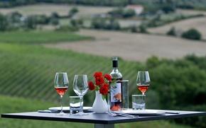 Картинка цветы, стол, вино, бокалы, на природе