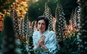 Картинка осень, девушка, цветы, платье, Ronny Garcia